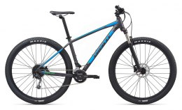 Giant Talon 29er 2 (GE) 2020